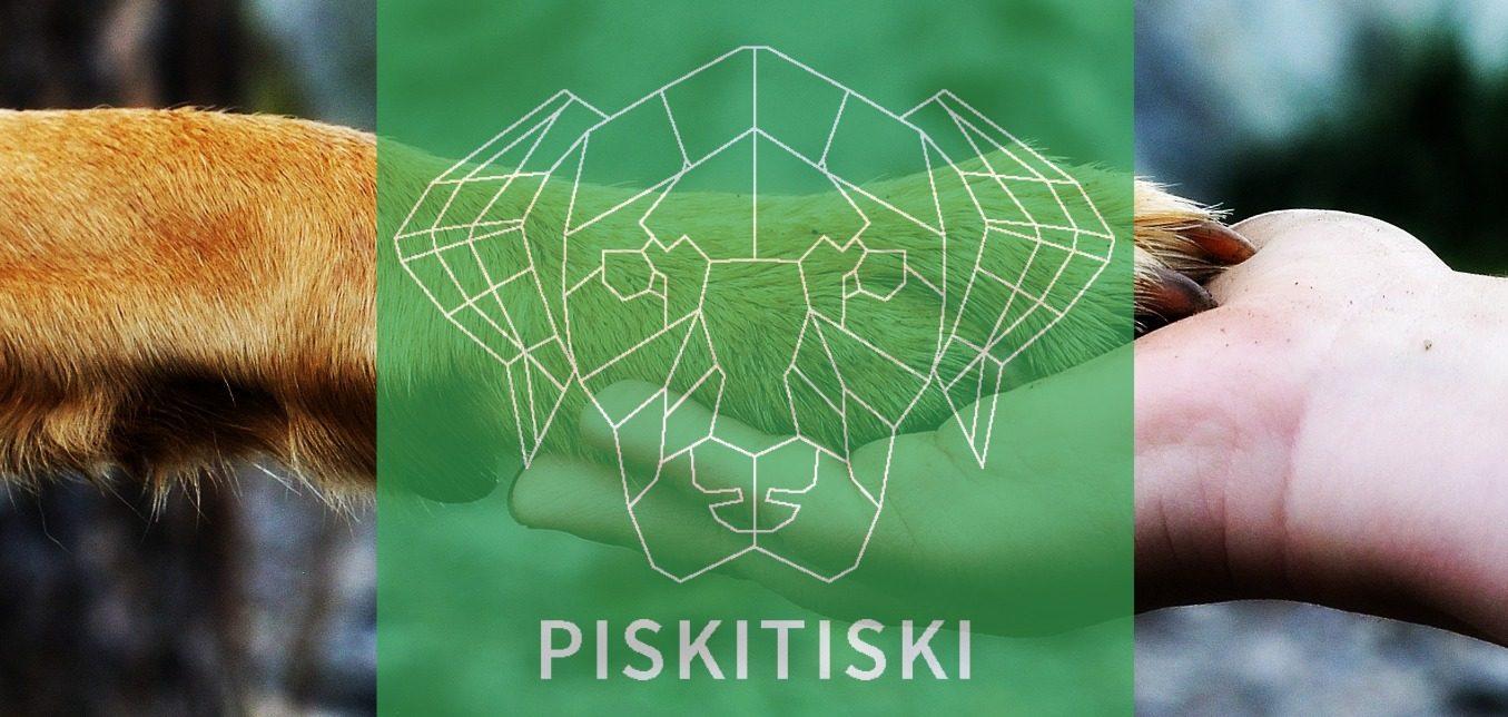 Koirakoulu Tuusulassa | PiskiTiski Oy